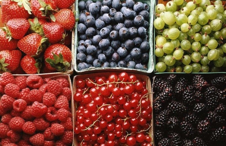 berries - Practical (and necessary) Diet Improvements