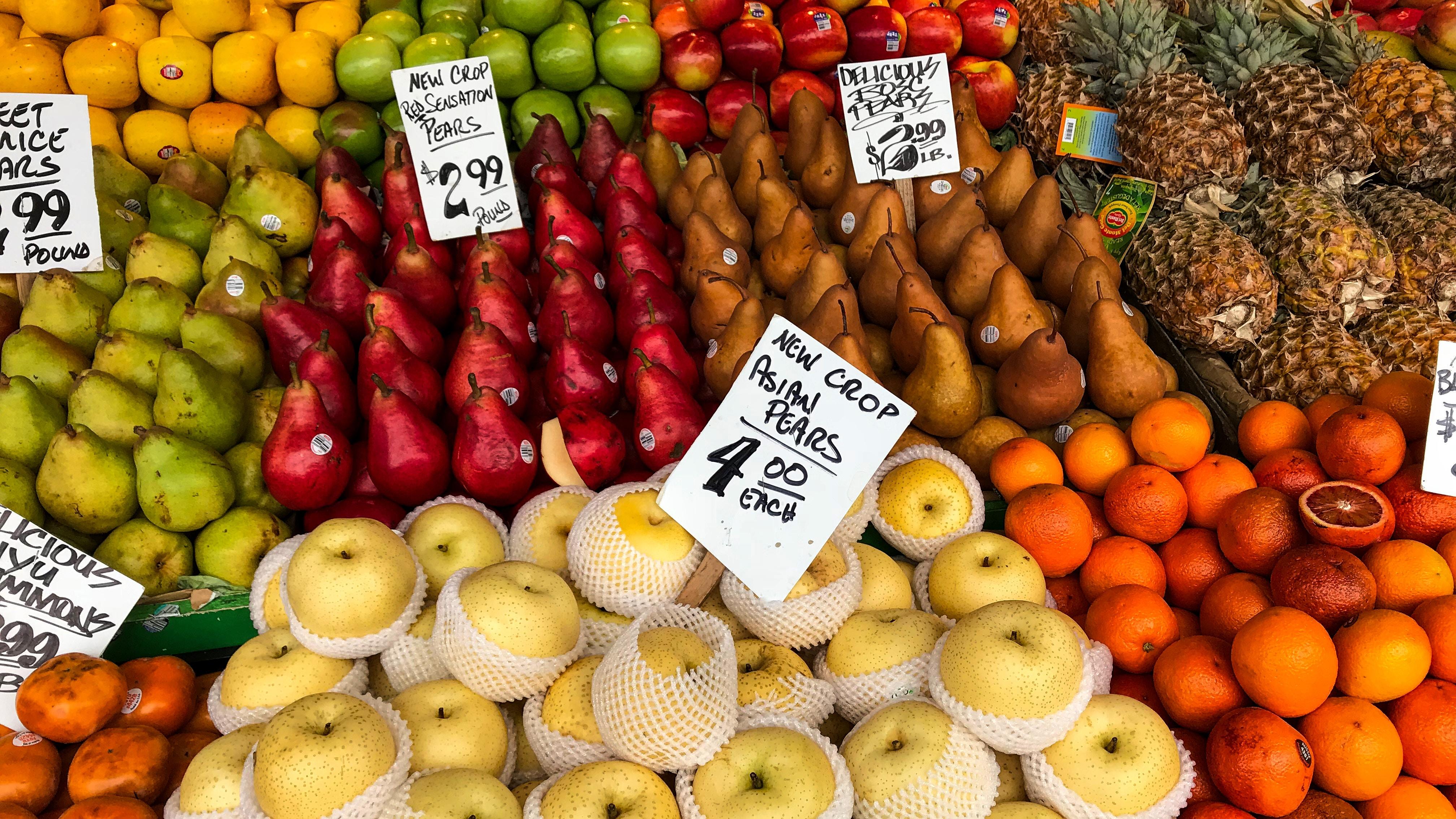 rajiv perera 467036 - Veggie Vitality: Preserving the freshness of our precious produce