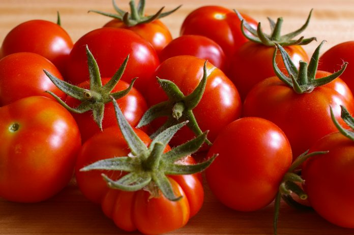 Juicy-Ripe-home-grown-tomatoes