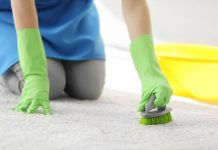 How to Clean Your Carpet Like a Professional